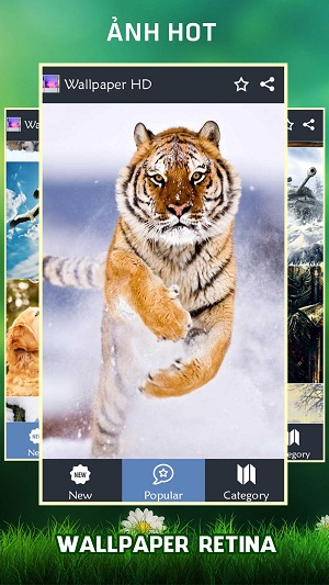 Chủ đề động vật trong ứng dụng hình nền điện thoại