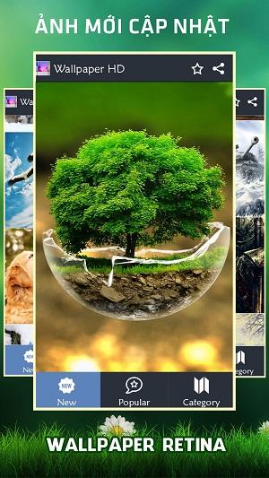hình ảnh thiên nhiên của ứng dụng hình nền điện thoại
